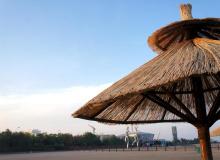 秦皇岛学问专家服务团进企业进农村活动走进北戴河