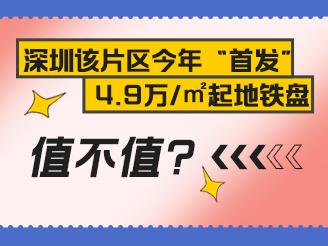 实探盐田首发新盘 臻湾云庭